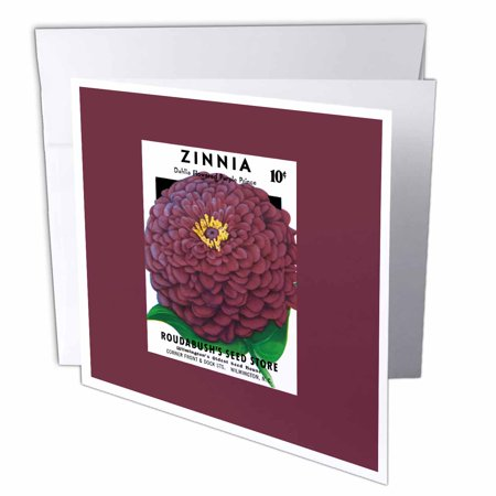 3dRose Zinnia Dahlia Flowered Purple Prince Seed Packet Reproduction, Greeting Cards, 6 x 6 inches, set of