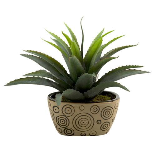 D&W Silks Star Succulent Planter