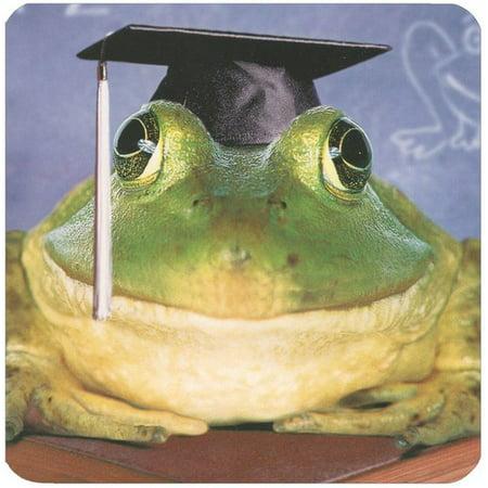 Graduation Cap Card Holder Box (Avanti Press Frog In Grad Cap On Books Square Gift Card Holder Greeting)