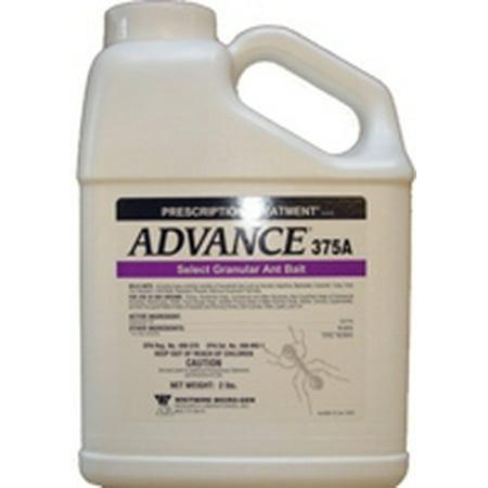 Advance Carpenter Ant Bait - 2 lbs.