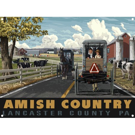 Horse Metal Art - Amish Country Lancaster County Pennsylvania Country Horse Buggy Metal Art Print by Paul A. Lanquist (9