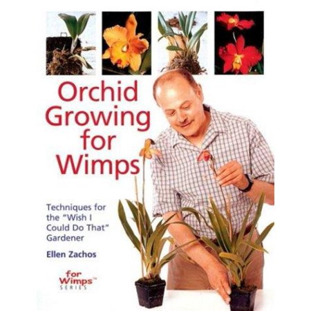 Orchid Growing For Wimps   Techniques For The   Wish I Could Do That   Gardener