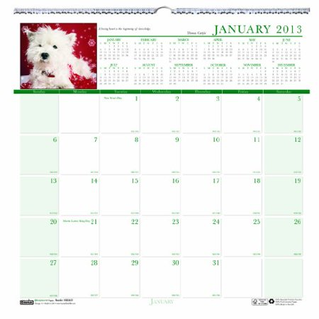 Earthscapes Puppies Wall Calendar - House of Doolittle Earthscapes Puppy Wall Calendar 12 Months January 2013 to December 2013 12 x 12 Inches Photo Recycled, Full C