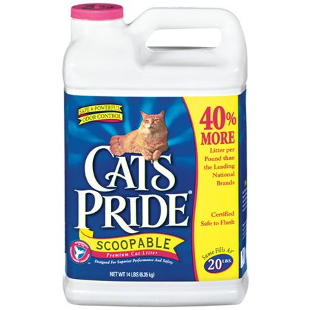 Cat S Pride Scoopable