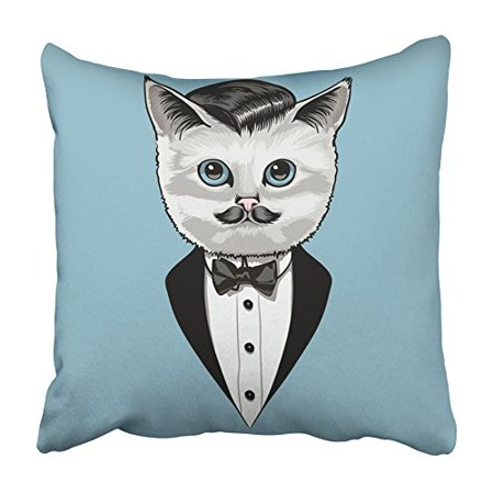 ARHOME Animal Cat in Tuxedo Vintage Look on Pale Blue Beast Cartoon Character Comic Pillowcase Cushion Cover 20x20 (The Best Cartoon Characters)