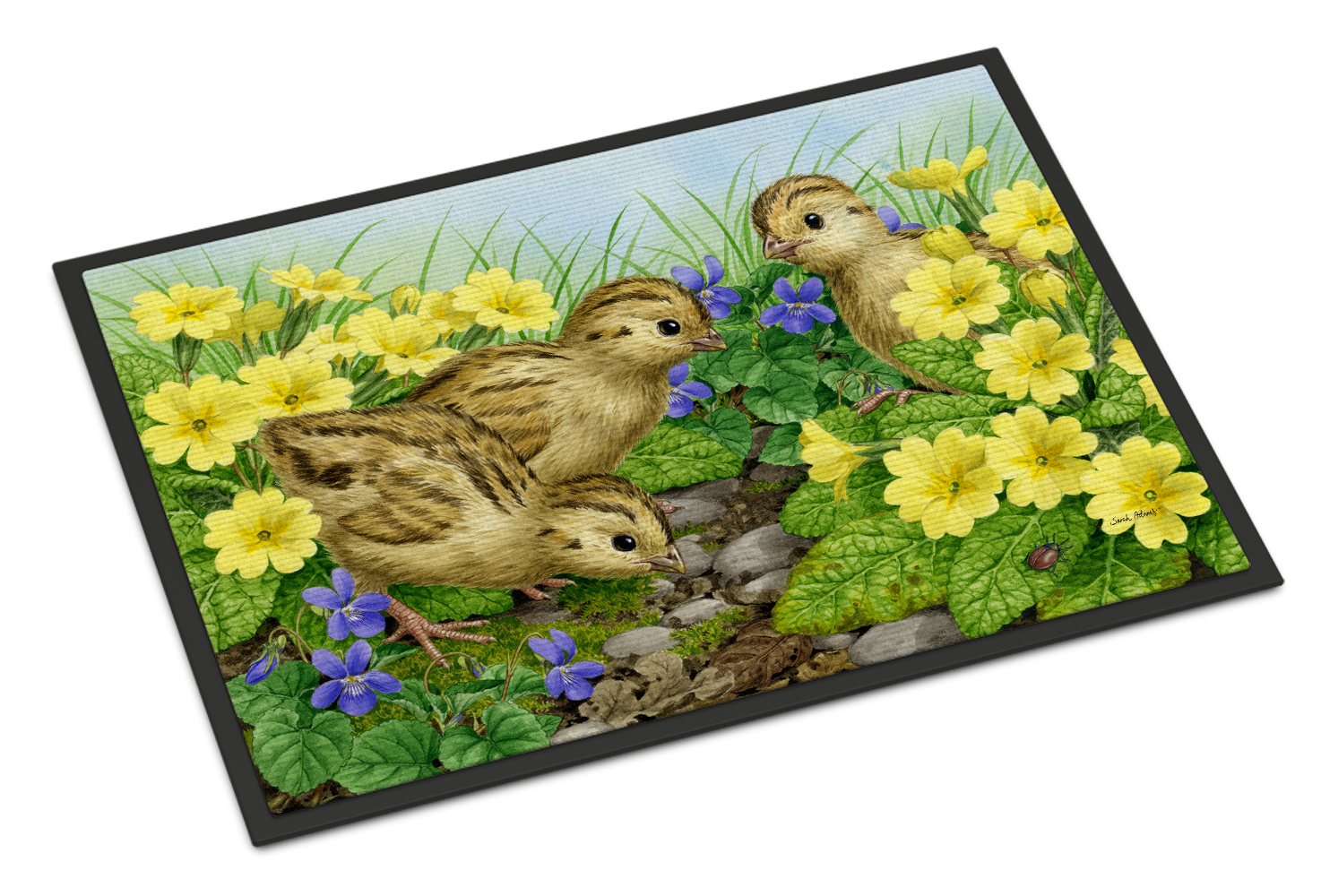 Pheasant Chicks Doormat by Caroline's Treasures