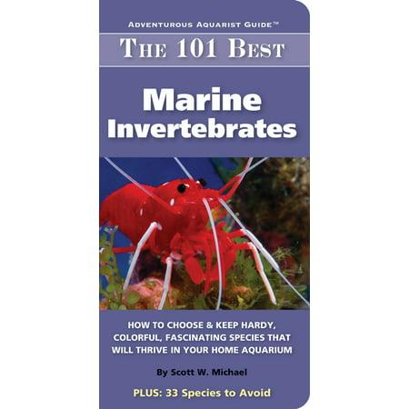 101 Best Marine Invertabrates - eBook