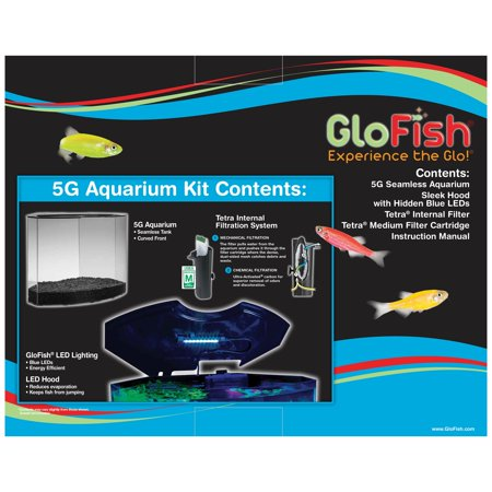 GloFish Crescent Aquarium Kit 5 G, Includes Blue LED Light And Filter (Cheap Fish Tank With Filter)