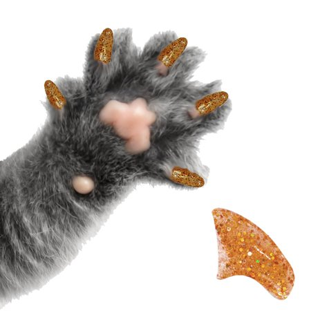 60 Pack Treasure Gold Glitter Soft Nail Caps for Cats Pretty Claws - Medium - Halloween Claw Nails