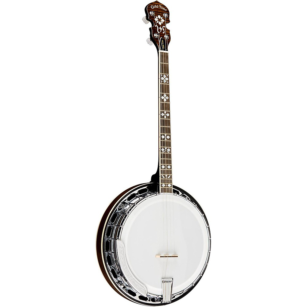 Gold Tone TS-250AT Tenor Archtop Tenor Banjo Vintage  bluegrass  4 string