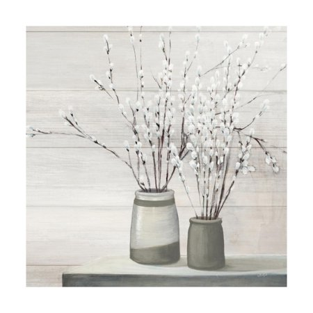 Pussy Willow Still Life Gray Pots Shiplap Print Wall Art By Julia (Best Way To Use A Pocket Pussy)