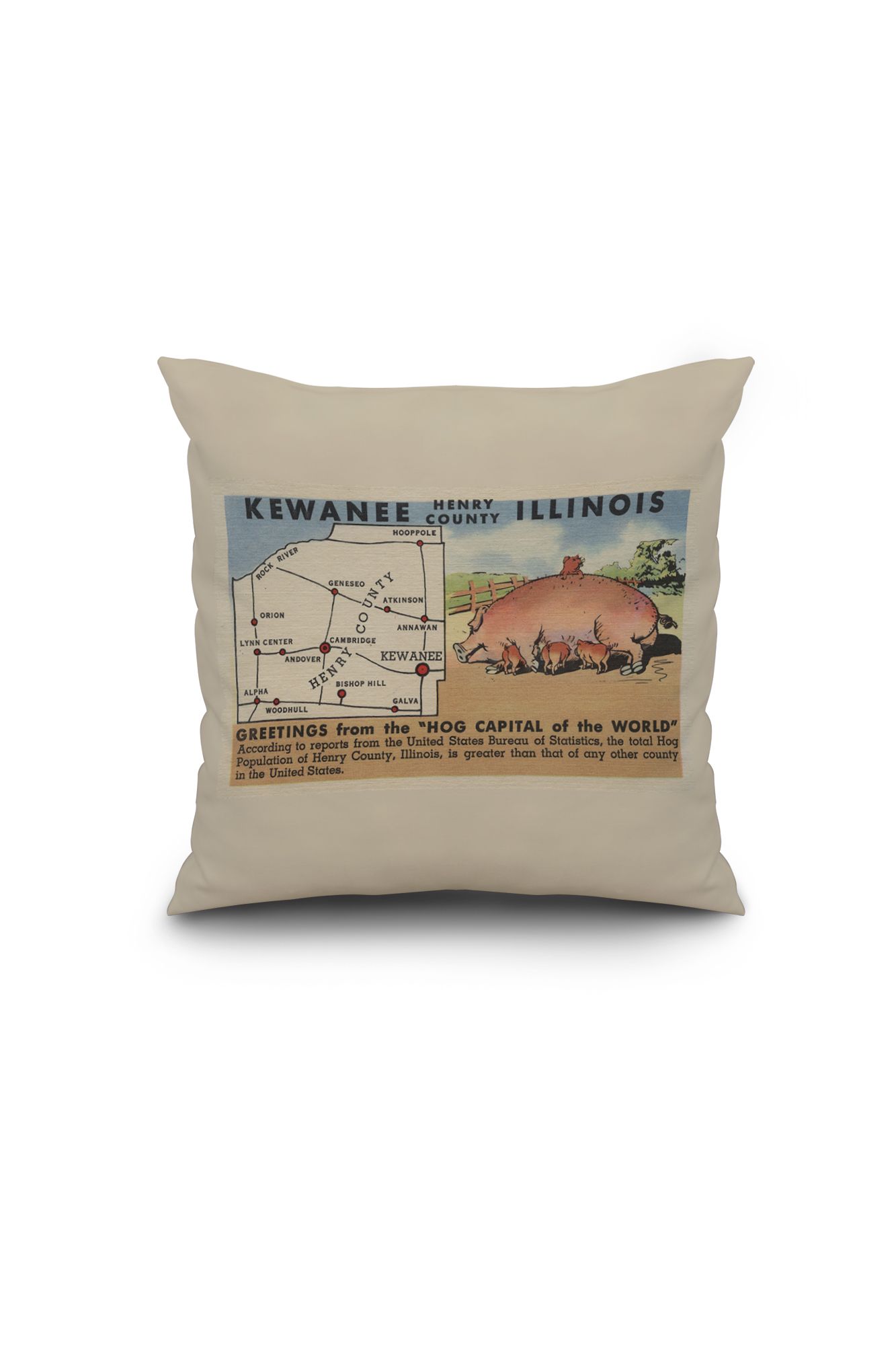 Illinois henry county andover - Kewanee Illinois Greetings From The Hog Capital Of The World 16x16 Spun Polyester Pillow Black Border Walmart Com