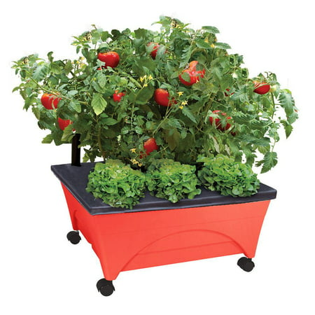City Picker Raised Bed Grow Box – Self Watering and Improved Aeration – Mobile Unit with Casters - Picker
