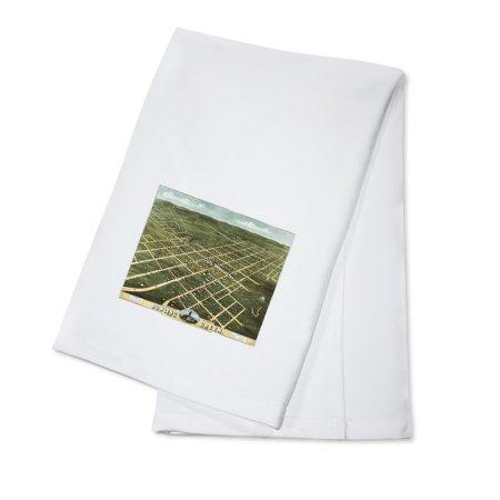 Bowling Green, Kentucky - Panoramic Map (100% Cotton Kitchen Towel)