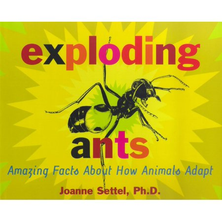 Exploding Ants : Amazing Facts About How Animals