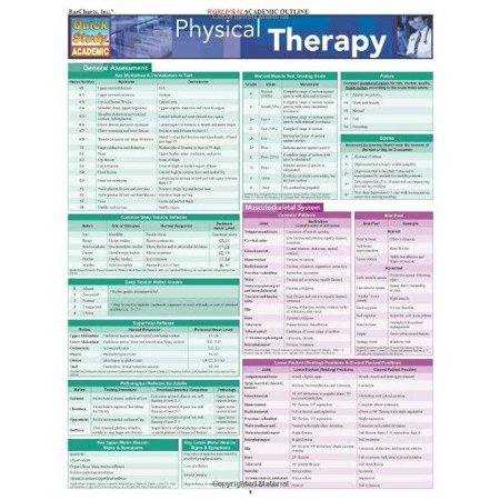 Physical Therapy - image 1 of 1