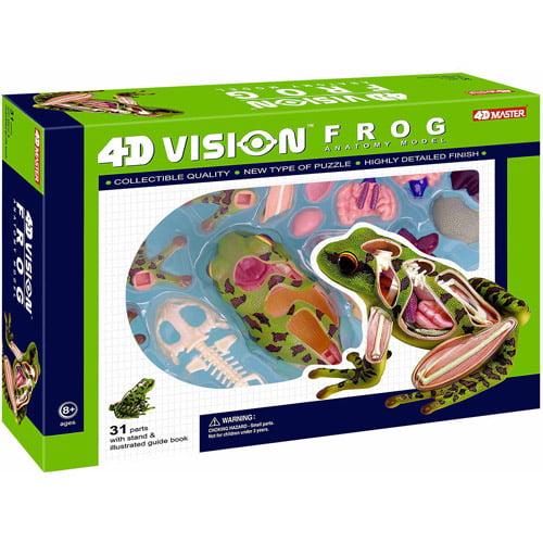 4D Vision Frog Model