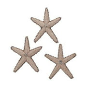 Elk Group International 7159-022-S3 9.1 in. Mixed Shell Star Fish Sculpture
