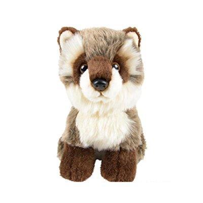 7 heirloom buttersoft raccoon