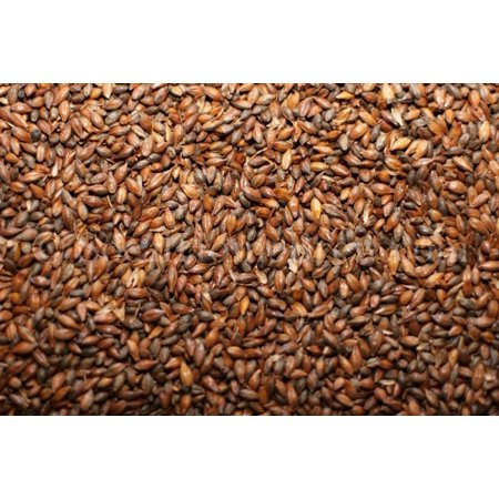 Roasted Barley by Briess, 1 lb
