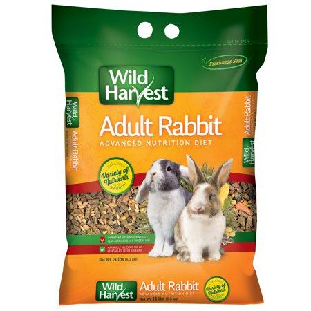 Adult Rabbit Food Wild Harvest Advanced Nutrition Diet