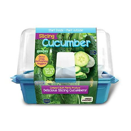 Unique Gardener - Slicing Cucumbers ()