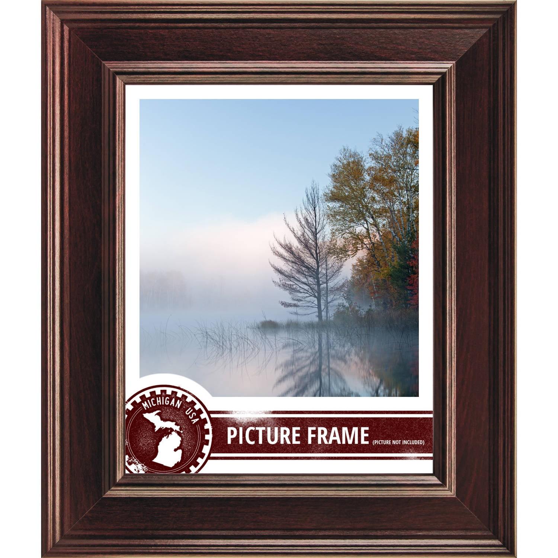 Craig Frames Contemporary Mahogany Red Picture Frame by Craig Frames Inc.