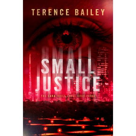 Small Justice - eBook