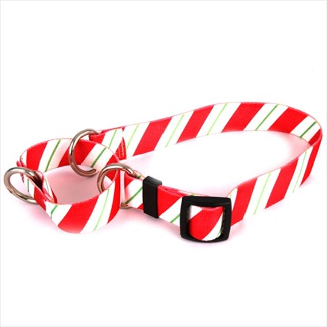 Yellow Dog Design M-PEP100XS Peppermint Stick Martingale Collar - Extra Small