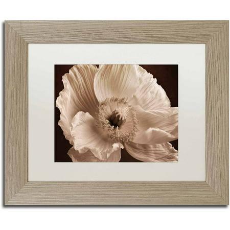 Trademark Fine Art 'Sepia Poppy I' Canvas Art by Cora Niele, White Matte, Birch Frame (Matte Sepia)