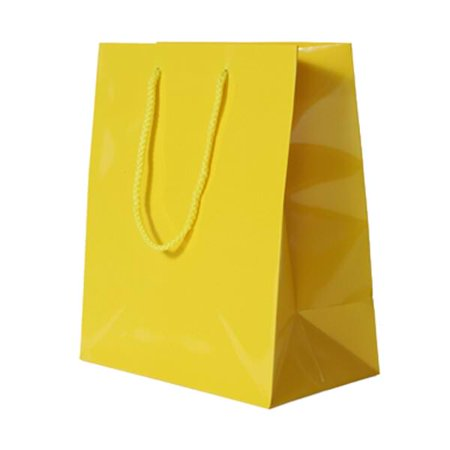 Jam Paper Glossy Gift Bags With Rope Handles Large 10 X 5