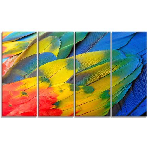 Design Art Scarlet Macaw Feathers 4 Piece Graphic Art On Wrapped Canvas Set Walmart Com Walmart Com