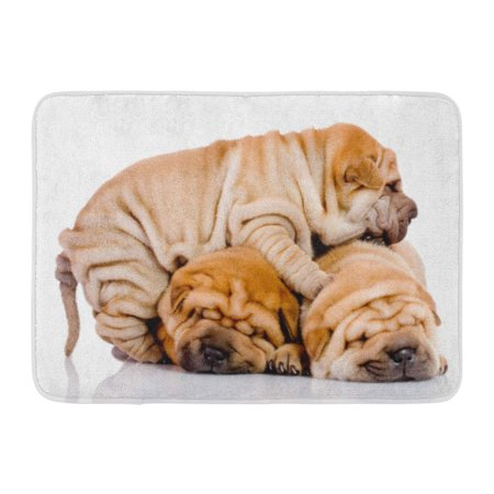 Godpok Big Brown Sleeping Three Shar Pei Baby Dogs Almost
