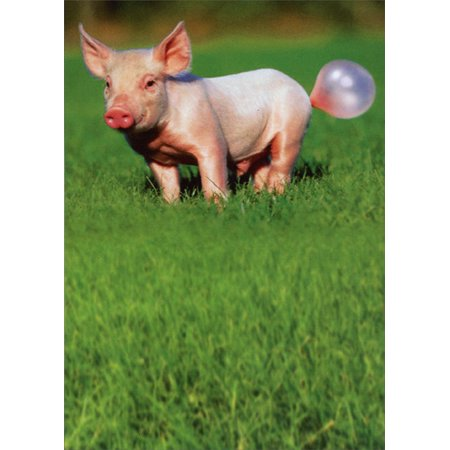 Recycled Paper Greetings Pig Blowing Bubble Funny Birthday Card](Funny Halloween Greeting Cards)