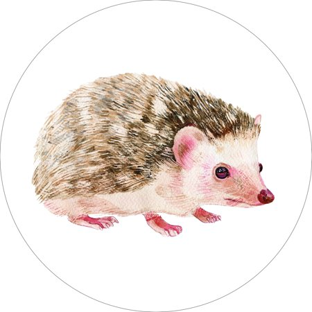 Hedgehog Home Wall Shelf Decor Animal Decorations Watercolor Round Sign - 18 - 18 Decorations