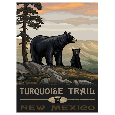 Turquoise Trail New Mexico Travel Art Print Poster by Paul A. Lanquist (9