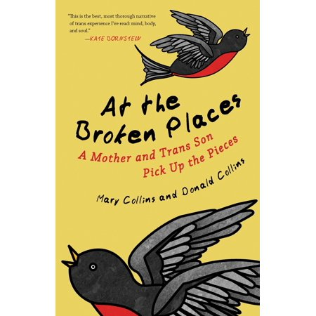 At the Broken Places : A Mother and Trans Son Pick Up the Pieces - Pick Up Ideas