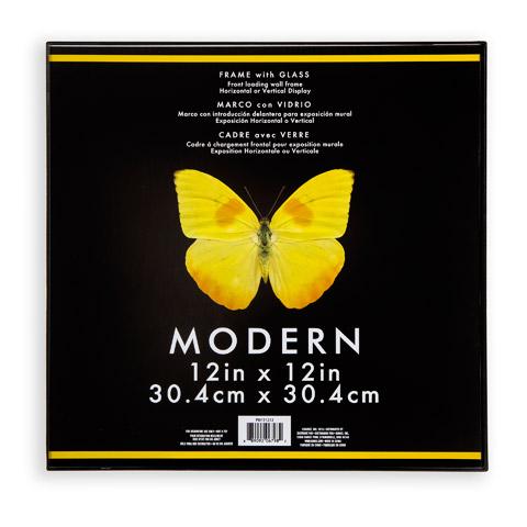 Darice Modern Frame: Plastic & Glass, Black, 12 x 12 inches