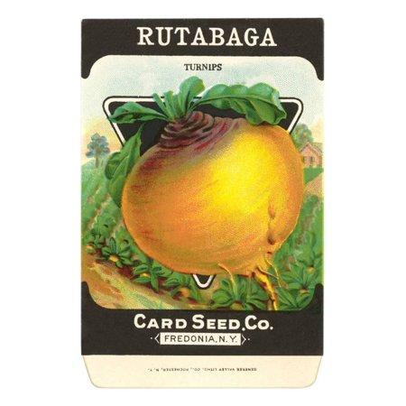 Rutabaga Seed Packet Print Wall Art