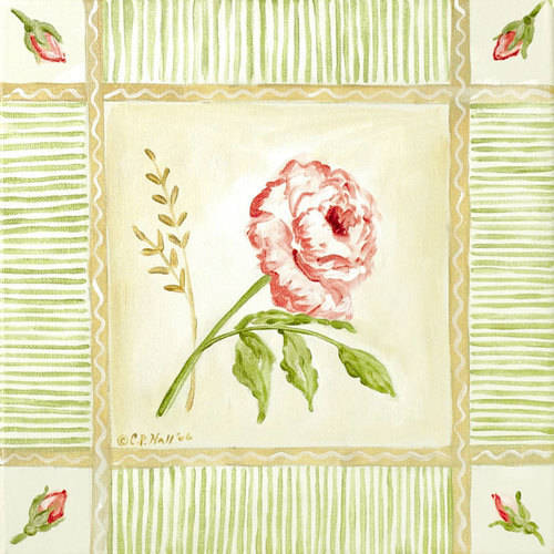 Oopsy Daisy - Canvas Wall Art Cottage Rose - Right Leaning 30x30 By Colleen Phelon Hall