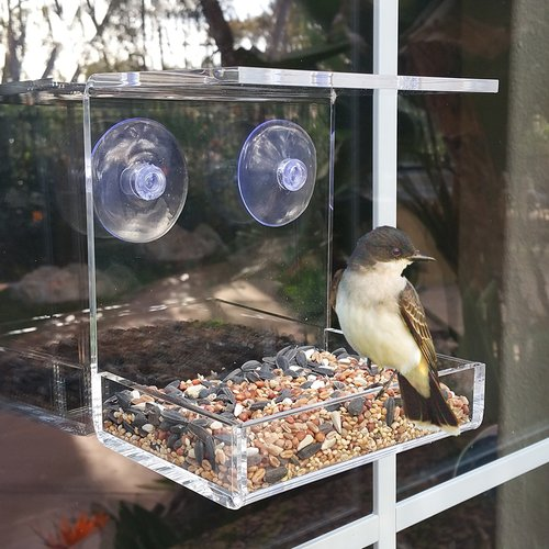 Vandue Corporation OnDisplay Window Mounted Tray Birdfeeder by Vandue