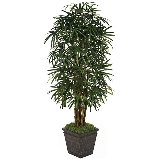 Autograph Foliages WR-60260 7 ft.  Lady Palm Tree, Tutone Green