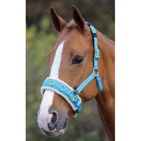 Cavesson Bridle - Fleece Lined Lunge Cavesson, Full Size - Blue