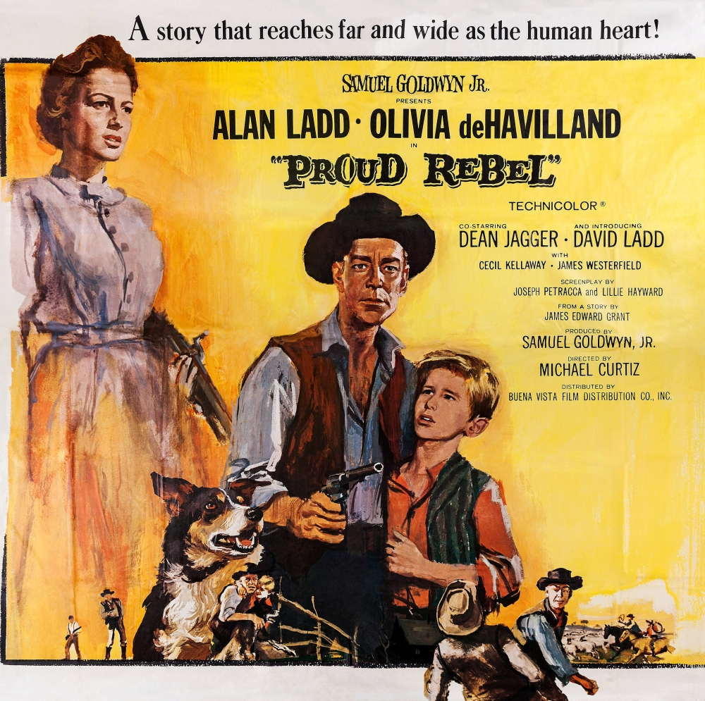 Image result for the proud rebel 1958