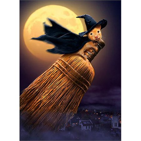 Avanti Press Witch Mouse On Broom Funny / Humorous Halloween Card - Halloween Cheese Brooms