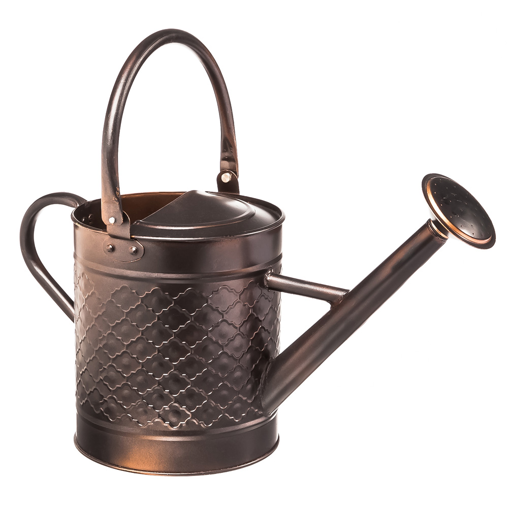 Nostalgic Antique Bronze Watering Can by EVERGREEN ENTERPRISES