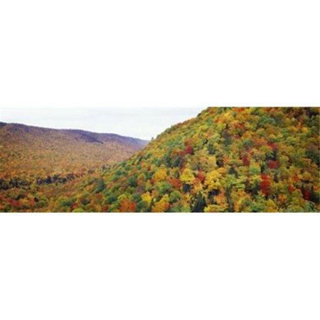 Panoramic Images PPI116211L Mountain forest in autumn  Nova Scotia  Canada Poster Print by Panoramic Images - 36 x 12 - image 1 of 1