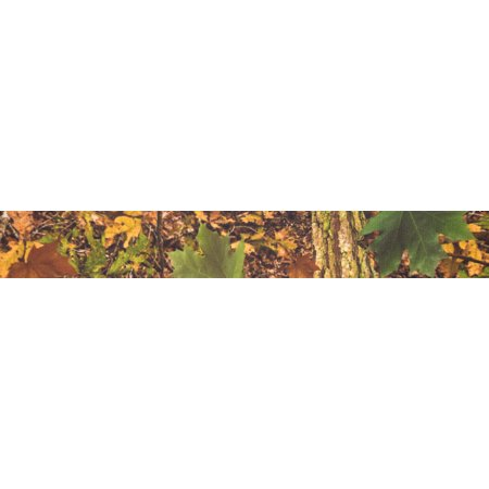 Country Brook Design® Southern Forest Camo Grosgrain
