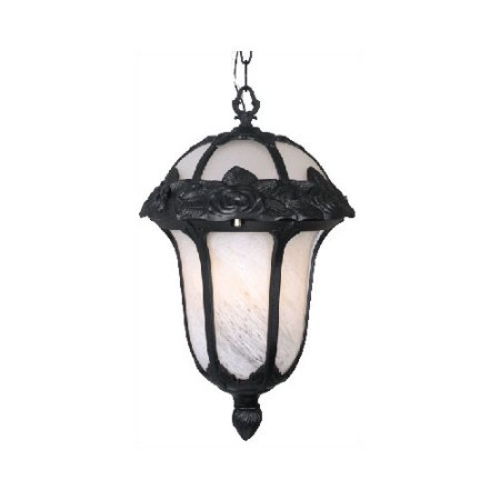 Special Lite Products Rose Garden F-1714 Small Chain Outdoor Pendant Light