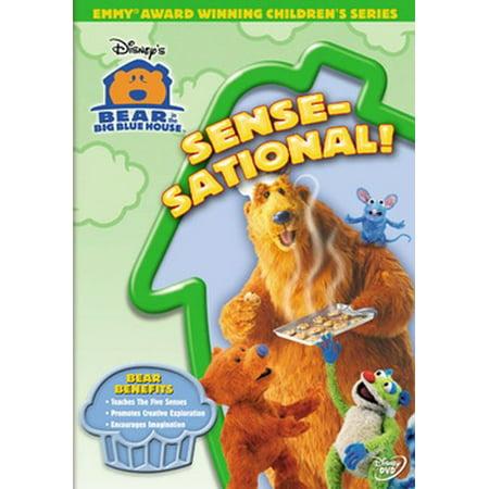Bear in the Big Blue House: Sense-Sational! (DVD) (Bear In The Big Blue House Cast)